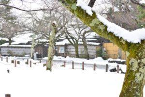 若神の死を悼むかのように、暁の空から雪が静かに舞い落ちる。